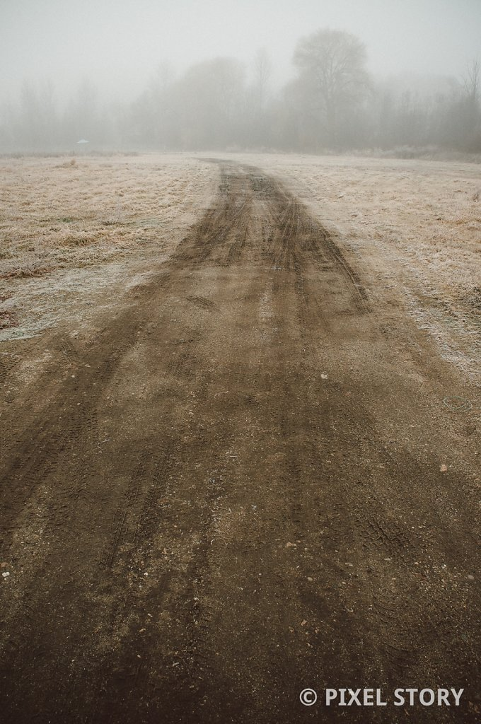 Dirt road into the fog #1